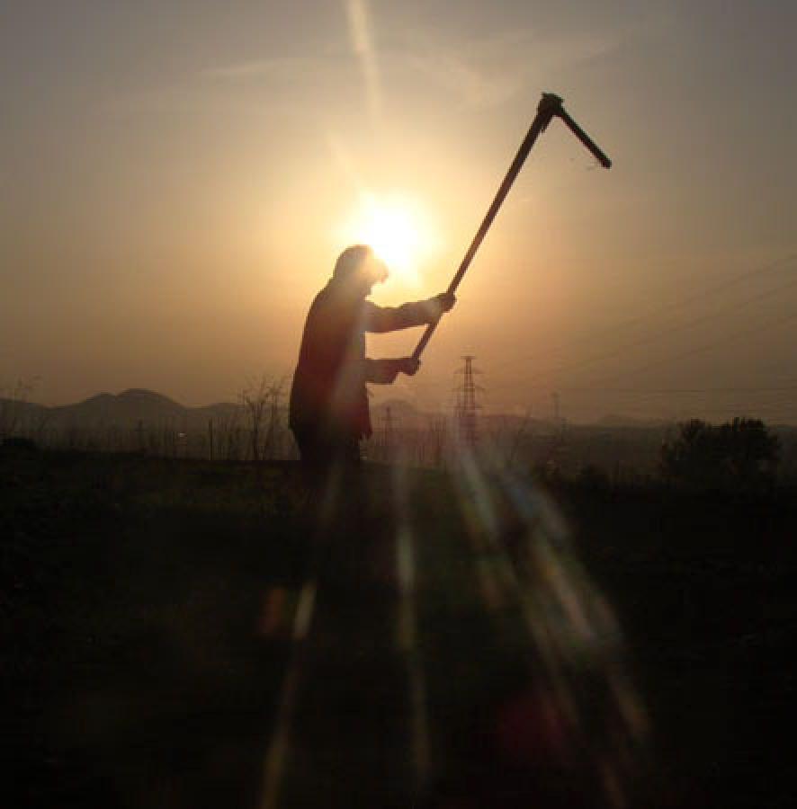 (原创)然  后 - 桑梓哥哥 - 桑梓哥哥的草根世界