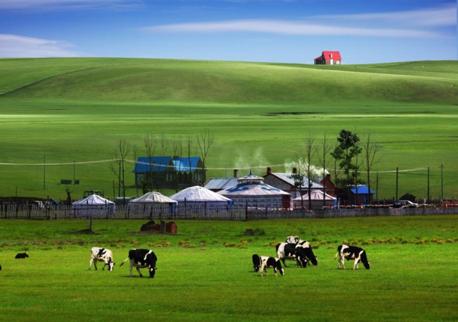 美丽的草原 - 好友 - 爱的家园