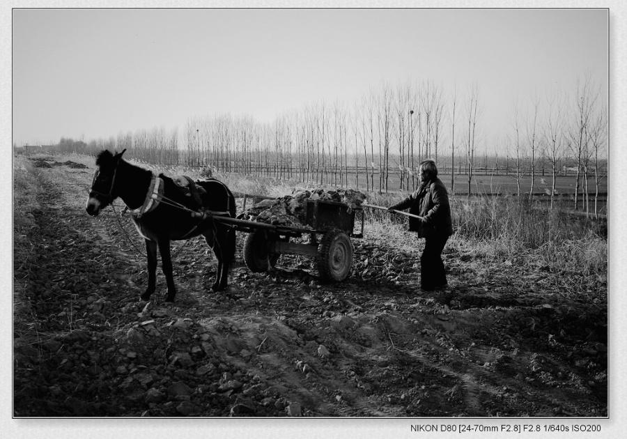 字 关于冬天的作文400字 我的家乡位于吉林省吉林市,那里一年四季风景