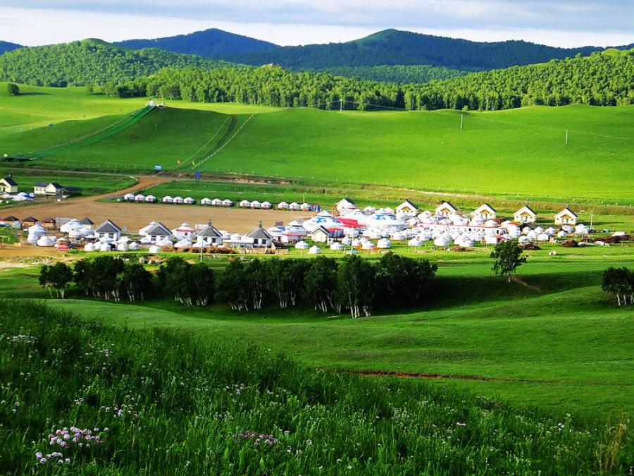 草原早餐   内蒙草原呼伦贝尔大草原   今年春天内蒙古草原雨高清图片
