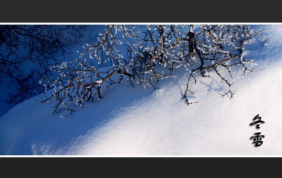 文人笔下的冬天:老舍写小雪之妙 苏童谈气味之纯 - 闲云野鹤  - 闲云野鹤 博客