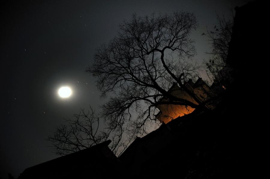 月光下的罪恶【YANZI】 - 山水依依 - 山水依依(我的文字,我的山水)