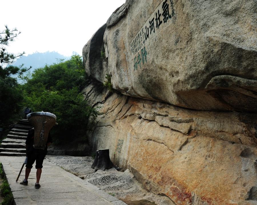 济南华山木材市场